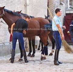 bootsservice 07 8230 (bootsservice) Tags: arme army uniforme uniformes uniform uniforms cavalerie cavalry cavalier cavaliers rider riders cheval chevaux horse horses bottes boots riding boots weston eperons spurs gants gloves gendarme gendarmerie militaire military garde rpublicaine paris