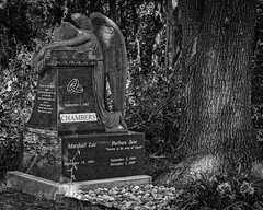 Angel of Grief (Chambers) (Mike Schaffner) Tags: angel angelofgrief bw blackwhite blackandwhite burialground cemetery chambers grave gravestone graveyard grief memorial monochrome monument redoak sculpture sorrow statue tombstone weeping texas unitedstates us