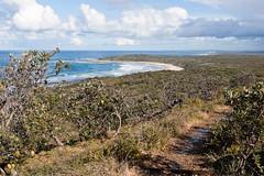 Little Shelley Beach and Shelley Headland