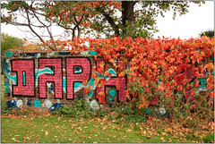 Dapher's Autumn Wall (Mabacam) Tags: 2016 london shoreditch eastend wall wednesdayhappy wednesday allengarden streetart publicart wallart dapher lettering blocks autumn autumnleaves autumncolour creeper virginiacreeper park