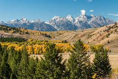 Autumn Tetons 2016 #79 (greggohanian) Tags: grandtetons tetons mountains hills foliage autumn