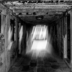 EXPLANATION (zventure,) Tags: zventure noiretblanc nb bw blackandwhite monochrome venise venisesept2016 venice passage