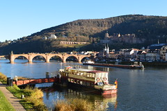 Heidelberg on the Neckar (mujepa) Tags: river boat ship bridge heidelberg germany neckar fleuve rivière pont
