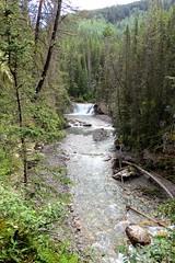 Wild Waters (Patricia Henschen) Tags: banff nationalpark alberta canada banffnationalpark parkscanada parcs parks trail johnstoncanyon johnstoncreek waterfalls waterfall hike canyon creek canadianrockies