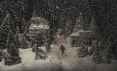 winter wonderland II (Alex Musgrave) Tags: conceptual nikond810 nikon50mmf14 strobist profotob1 christmas nikonmc36 yyj bc victoria photeksoftlighterii36 snow xmas winterwonderland profotoairsync fx