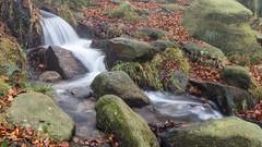 NB-3.jpg (neil.bulman) Tags: countryside longshawestate peakdistrict nature nationalpark derbyshire longshaw fog nationaltrust longexposure water burbagebrook derbyshiredalesdistrict england unitedkingdom gb