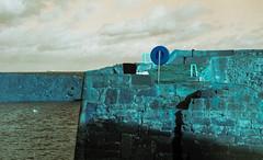 Safe From Harm (5) (Mrs.Black&White) Tags: praktica ltl3 carlzeiss jena 50mmf28 lomography lomochrometurquoise handprocessed tetenal c41process dunbar eastlothian scotland
