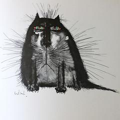 Monday. (Kultur*) Tags: books humorbooks illustrated animals cats illustrations cute funny cat humour ronaldsearle searlescats catbook cathumour vintage vintagebook