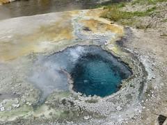 Upper Geyser Basin #3 (jimsawthat) Tags: park thermalfeature rural wyoming uppergeyserbasin yellowstonenationalpark