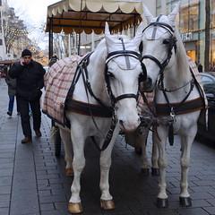 Vienne /  Wien in der MariahilferstraBe