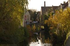 Beloved Brugge (Natali Antonovich) Tags: belovedbrugge brugge bruges belgium belgie belgique pensiveautumn autumn water canal lifestyle architecture oldtown oldtime oldworld oldest landscape citylandscape