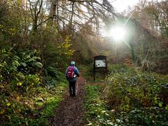 (charlestindall) Tags: sunlight light mother mum morning mud walking hiking countryside outdoors