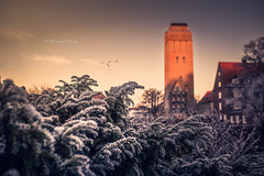 Tower of Delmenhorst (klausi1983) Tags: sun sunset sky sunlight winter white clouds light trees cold hight green travel delmenhorst deutschland canon sigma 35mm