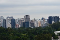 DSC_1472 (Machtigen) Tags: selva pedra city são paulo ibirapuera