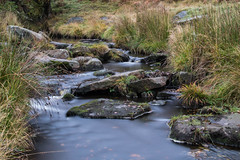 Burbage Brook 2 (21mapple) Tags: burbage burbagebrook brook stones rocks countryside landscape water waterscape peakdistrict peak district derbyshire nationaltrust nt national trust grass green outdoors outside outdoor out