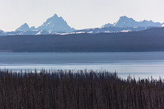 Grand Teton, Mount Moran, and Yellowstone Lake from the east entrance Road (YellowstoneNPS) Tags: jacobwfrank landscape yellowstonelake eastentranceroad grandteton mtmoran