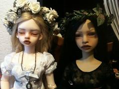 Carmen & Virginia (witch woman) Tags: ball doll mind bjd dim laia annabeth jointed