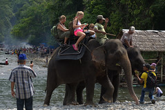 Local watching tourists riding an elephant