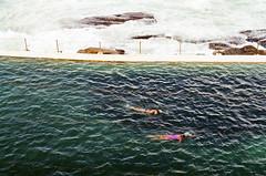 Swimming (Ellen Munro) Tags: ocean slr film pool bondi swimming 35mm pentax sydney australia swimmingpool 35mmfilm analogue bondibeach programa australasia oceanpool filmslr pentaxprograma