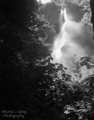 Upper Starvation Creek Falls (Gary L. Quay) Tags: 4x5 gary quay garylquay largeformat foolscape foolscapeimagery film starvationcreek oregon kodak trix ilfotechc columbiagorge columbiariver waterfall
