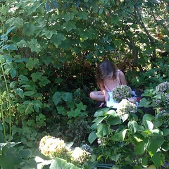 "This was a beautiful moment in the garden last week. The sidewalk is about six feet past where this lovely young artist is sitting. This part of the garden is inspired by hiking trails in the Mt. Hood Wilderness. There are lots of natives: rhododendron, t • <a style=""font-size:0.8em;"" href=""https://www.flickr.com/photos/61640076@N04/9939744465/"" target=""_blank"">View on Flickr</a>"