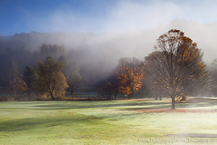 The Morning Mist (baddoguy) Tags: morning blue autumn usa sunlight mist tree nature horizontal fog outdoors photography leaf scenery vermont newengland tranquility nopeople fallfoliage copyspace tranquilscene colorimage beautyinnature greencolor grassarea coldtemperature woodstockvermont