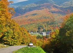 Fall Foliage from the Auto Road (rightthewrong) Tags: auto road new autumn white mountains color fall leaves washington leaf october mt great oct peak nh hampshire presidential glen foliage mount observatory summit leafs range base obs notch pinkham mwo presidentials 2013