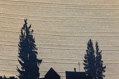 Natural Stage (Aerial Photography) Tags: shadow field by deutschland feld aerial sch schatten deu aic luftbild luftaufnahme bayernbavaria merching fotoklausleidorfwwwleidorfde 10102010 1ds56346 steinacherstrase merchinglkraichachfriedberg