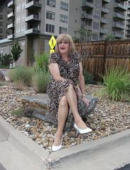 new92658-IMG_0009t (Misscherieamor) Tags: garden tv feminine cd tgirl transgender mature sissy tranny transvestite crossdress ts gurl tg bigrock travestis travesti travestie m2f xdresser tgurl slipshowing animalprintdress