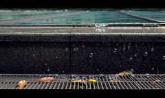 Waves on Concrete (QuantumLogic (Slow)) Tags: street city urban water japan tokyo drops widescreen sony roppongi waterdrops cinematic a57 1650 sonyalpha