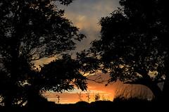 Sunset (Barbara Walsh Photography) Tags: blue trees sunset sky orange sun yellow clouds evening dingle nikond5100
