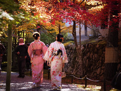 japan kyoto olympus autumnleaves 京都 紅葉 omd em1 (Photo: torne (where's my lens cap?) on Flickr)