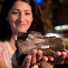 Paleontologist Lindsay Zanno holds a fossilized vertebra from Siats meekorum, a newly discovered species of giant carnivorous dinosaur.