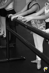 Elas Bailarinas (Marcelo Seixas) Tags: show brazil portrait people ballet woman art love girl beautiful muscles photography gold star photo dance ballerina bravo perfect arte dancing artistic action danza mulher young surreal best class professional boa angels linda tanz celular vista balance performace lovely tones dana poise jovem performances ballo roraima palco tons amazonia perfeito boavista cady passo balet profissional ballerinas balett apresentao bal sapatilha sansung espetculo musculos perfeio balerina ballerino bailarino danze baletki bailariana marceloseixas baletka baletky instagram kalizasharlaflores