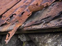 emaklbburinn/Ry (helga 105) Tags: red iceland useless olden rautt gamalt rusten ry ntt helga105
