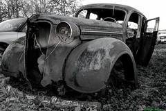 Junk Yard Plymouth (Motor Gnome) Tags: abandoned yard junk rust decay plymouth urbex southernillinois rurex motorgnome