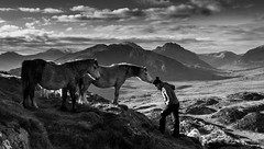 The Horse Whisperer - Explored (Nick Livesey Mountain Images) Tags: