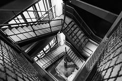 Inside 'Zeche Zollverein' (bernd obervossbeck) Tags: blackandwhite bw stairway staircase schwarzweiss unescoworldheritage zechezollverein coalmine weltkulturerbe treppenhaus worldculturalheritage schwarzweis