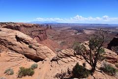 Canyonlands (Dawn Coyote) Tags: utah canyonlandsnationalpark canyonlands nationalparks