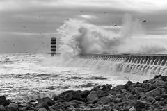Porto (AFPereira) Tags: ocean sea mer lighthouse rio mar wave atlantic porto douro farol foz oceano atlantico onda