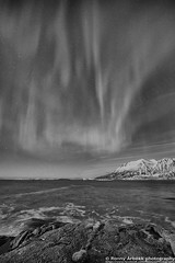 IMG_2866 (Ronny Årbekk - http://arcticphotography.no) Tags: norway norge photographer arctic norwegian nordnorge troms polarsirkelen northernnorway visitnorway polarsirkel abovethearcticcircle ronnyårbekk