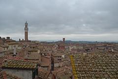 Siena (Tuscany) from Pinacoteca (Bianca Rigamonti) Tags: italy tuscany siena toscana horizons