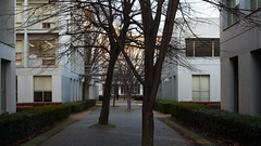 fujisawa - keio university shonan campus 9 (Doctor Casino) Tags: architecture campus architect fumihikomaki keidai keiouniversity shonanfujisawa 19901994 makifumihiko keiōgijukudaigaku shonanfujisawakanpasu