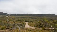 Hartz Mountains NP