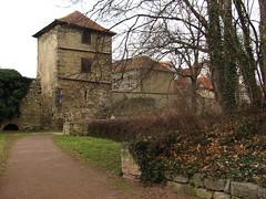 Schloßgarten Arnstadt (germancute) Tags: park castle germany deutschland town thüringen thuringia arnstadt germancute