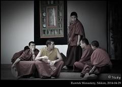 (V.i.c.k.y) Tags: monastery monks sikkim poeple greyscale gangtok rumtek nikond90