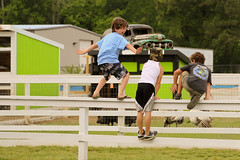 Fence Surfing (TW Collins) Tags: childhood kids fun happy northcarolina gravedigger outerbanks obx monstertruck spontaneous facialexpression poplarbranch diggersdungeon fencesurfing roadsideatrraction