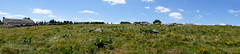 DSCF5310-2 (I Ring) Tags: panorama les burons de salers juli 2016 massif central france landscape nature fujifilm fuji xt1