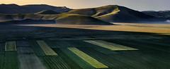 Lights and shadows. (Massetti Fabrizio) Tags: sunrise cambo castelluccio italy italia iq180 rodenstock umbria marche mountain mount color yellow red sun landscape landscapes