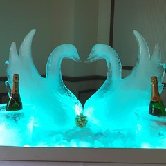 Angel Ice Sculptures on Instagram (angel-ice-aculptures) Tags: ice carving sculptures brisbane gold coast sunshine wedding carvings
